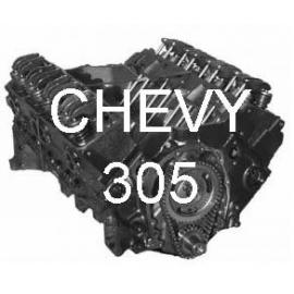 Chevy 305/5,0